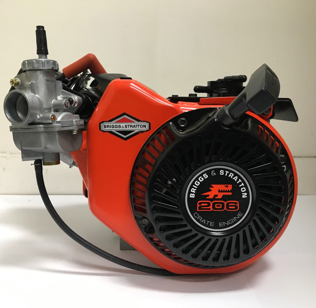 Briggs & Stratton LO206 4 Stroke engine